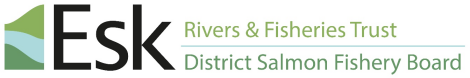 Esk Rivers and Fisheries Trust Brand Logo